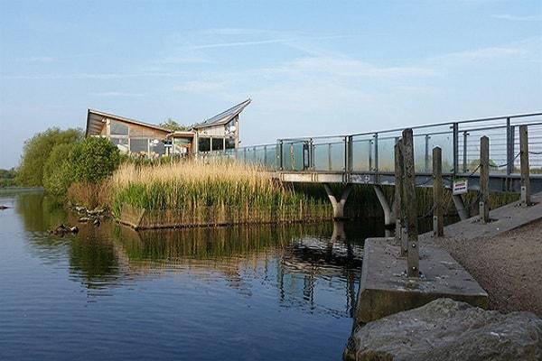Attenborough Nature Reserve in Nottingham